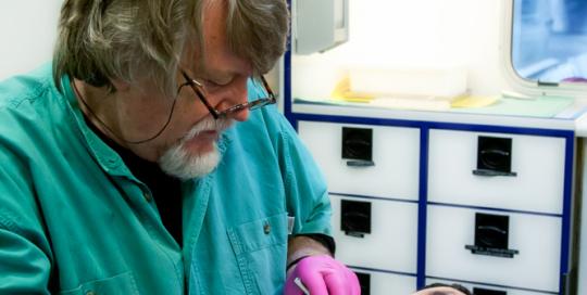 Behandlung im Zahnmobil